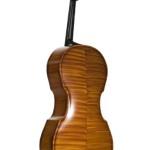 Ricci Carbon Fiber Cello