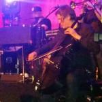 Niklas Hardt on a Ricci Appasionate - Bosse in concert
