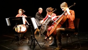 Solina Ensemble