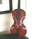 Violine glossy