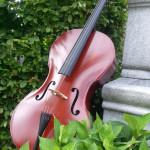 Cello antique